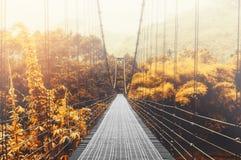 Bosque hermoso y luz del sol del otoño, con puente colgante de acero en el día de niebla por la mañana, tono del vintage Foto de archivo