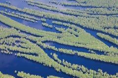 Bosque inundado al lado del río, visión superior Fotos de archivo
