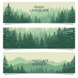 bosque libre y moutain Fotos de archivo libres de regalías