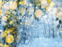 Bosque mágico del paisaje del invierno en helada de la nieve con la luz de la Navidad Foto de archivo