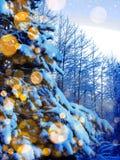 Bosque mágico del paisaje del invierno en helada de la nieve con la luz de la Navidad Fotografía de archivo