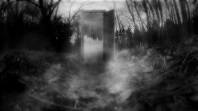 Bosque místico con las puertas almacen de video