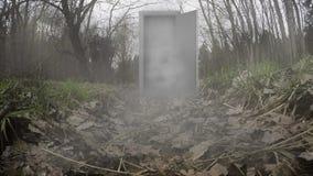 Bosque místico con las puertas almacen de metraje de vídeo