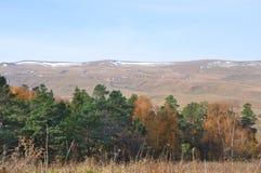 Bosque mezclado en la meseta de Lagonaki República de Adygea, Rusia Fotos de archivo libres de regalías