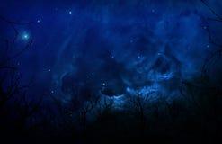 Bosque misterioso de la silueta en cielo nocturno azul Foto de archivo