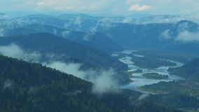 Bosque, montañas, niebla, metrajes