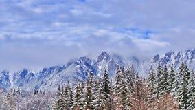 Bosque, montañas y cielo nublado Foto de archivo libre de regalías