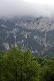 Bosque, montañas y nubes Fotografía de archivo