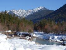Bosque Nevado de Isartal Fotos de archivo libres de regalías
