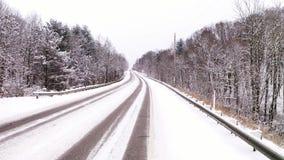 Bosque nevado de la carretera nacional del invierno metrajes