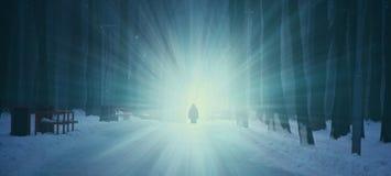 Bosque oscuro del invierno en la niebla Figura sola en el fondo de la luz imagen de archivo