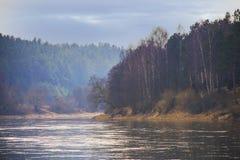 Bosque oscuro por el río antes de la lluvia Fotografía de archivo libre de regalías