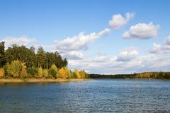 Bosque otoñal del paisaje Imágenes de archivo libres de regalías