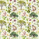 Bosque: pájaro, conejo, árbol, hojas, flores e hierba Modelo inconsútil watercolour Foto de archivo
