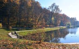 Bosque, parque, reflexión de árboles en un río, lago Orilla del río Una persona en el puente Foto de archivo