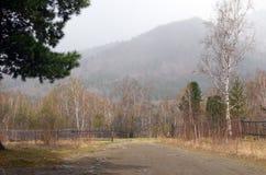 Bosque pintoresco de la primavera en el pie del Sayans en tiempo nublado Fotos de archivo libres de regalías