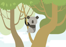 Bosque plano de la rama de árbol de los animales salvajes del vector de la historieta del diseño de la koala Fotografía de archivo libre de regalías