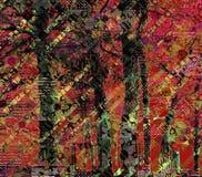 Bosque profundo Fotos de archivo libres de regalías