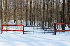 Bosque que entra de la puerta en invierno imagen de archivo