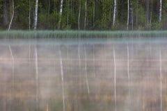 Bosque que refleja al pequeño lago en la mañana Imágenes de archivo libres de regalías