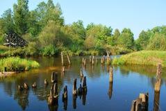 Bosque, río y postes imagen de archivo libre de regalías
