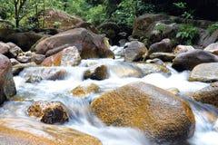 Bosque recreativo de Chemerong fotografía de archivo