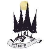 Bosque salvaje Imagen de archivo libre de regalías