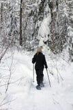 Bosque snowshoeing Fotografía de archivo