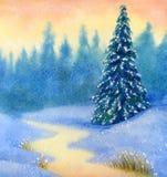 Bosque spruce nevado Foto de archivo libre de regalías