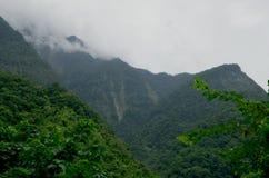 Bosque tropical cerca de los acantilados de Quingshui, Taiwán Fotos de archivo