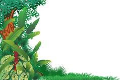 Bosque tropical exótico Imagen de archivo