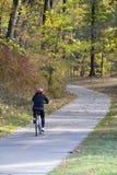 Bosque urbano en la caída de Michigan Fotos de archivo