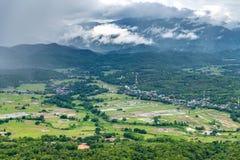Bosque verde de la montaña nebulosa fotos de archivo libres de regalías