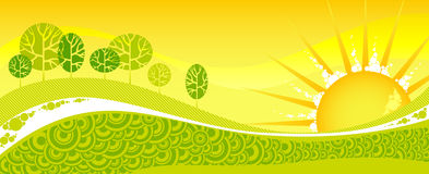 Bosque verde del resorte en una puesta del sol amarilla. Imagen de archivo libre de regalías