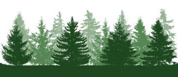 Bosque verde del verano, silueta de piceas Ilustración del vector libre illustration