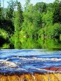 Bosque verde reflejado y cascada Imágenes de archivo libres de regalías