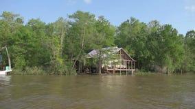Bosque y árbol de la selva de Honey Island Swamp Tour With en New Orleans, Luisiana almacen de video