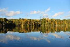 Bosque y árboles viejos debajo del cielo azul en la orilla del lago Imagen de archivo libre de regalías