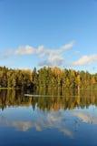Bosque y árboles viejos debajo del cielo azul en la orilla del lago Imágenes de archivo libres de regalías