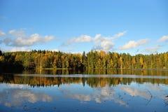Bosque y árboles viejos debajo del cielo azul en la orilla del lago Fotos de archivo