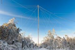 Bosque y antena Foto de archivo libre de regalías