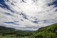 Bosque y cielo Foto de archivo libre de regalías