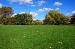Bosque y jardín bajo el cielo azul en la caída foto de archivo libre de regalías