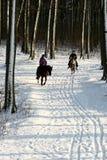Bosque y jinetes del invierno Fotografía de archivo