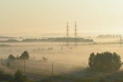 Bosque y líneas eléctricas en niebla de la mañana foto de archivo