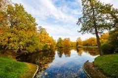 Bosque y lago coloridos en temporada de otoño fotografía de archivo
