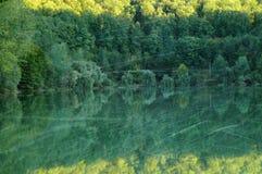 Bosque y lago del otoño del vintage imagen de archivo