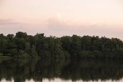 Bosque y lago en el sol de la tarde Imagen de archivo