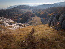 Bosque y montaña Foto de archivo libre de regalías