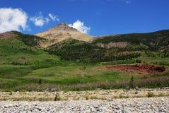 Bosque y montaña fotografía de archivo libre de regalías